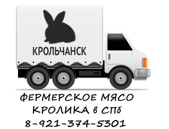 Заказать детский праздник днепропетровск